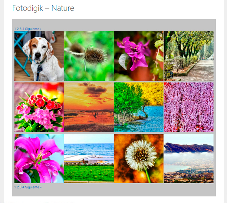 Galería Fotografías Fotodigik Nature